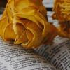 Wiara chrześcijańskA