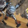 Jak dobrać kołowrotek do konkretnej ryby?
